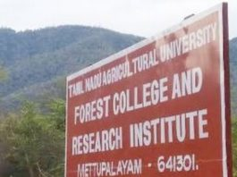Forest College and Research Institute Mettupalayam